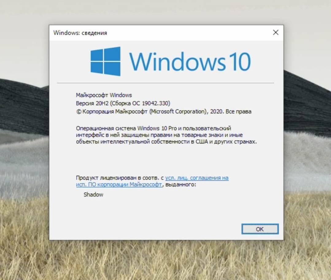 Windows 20H2
